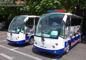 深圳湾、红树林-电动观光车