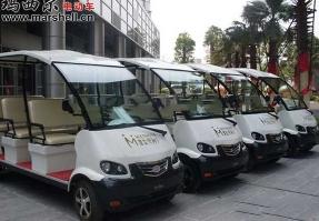 潜龙地产-电动观光车
